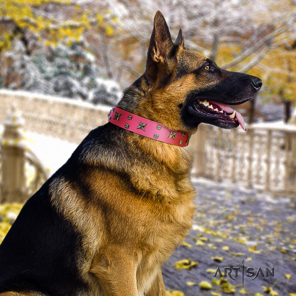 German Shepherd Dog significant adorned natural genuine leather dog collar