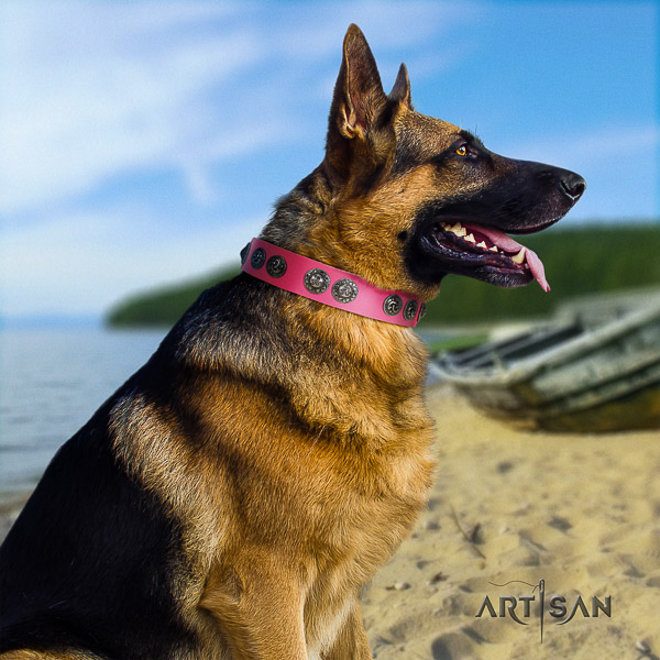 German Shepherd Dog stylish embellished genuine leather dog collar