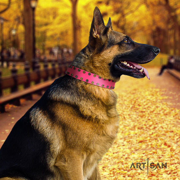 German Shepherd Dog full grain genuine leather dog collar with adornments for daily use
