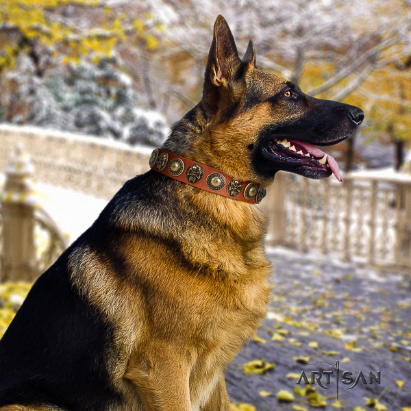 German Shepherd Dog full grain genuine leather dog collar with adornments for handy use