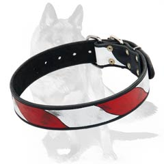 Handcrafted Dog Collar for walks in style