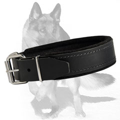 Strong Leather Collar with felt padding