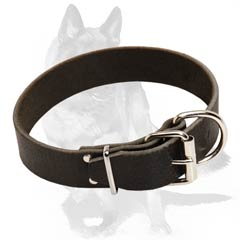 Extra strong Dog Collar for walks
