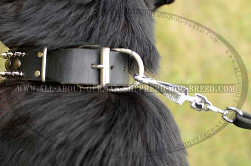 Extra Strong Collar for your Shepherd