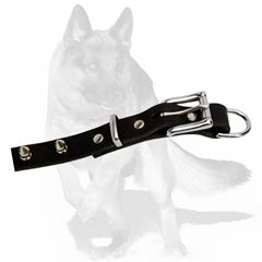 Stylish Spiked Collar for German Shepherd Dog