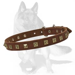 Handcrafted Leather Collar for Shepherd
