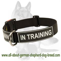 Lightweight Collar with patches for identification