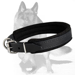 Heavy Duty Padded Leather Collar for Comfort