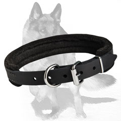 Secure fit Leather Collar with felt padding