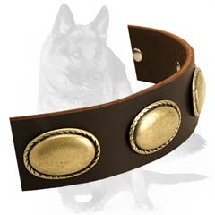 Durable leather collar with vintage studs