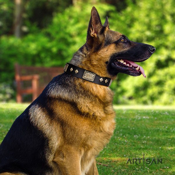 German Shepherd embellished full grain genuine leather dog collar for your beautiful canine