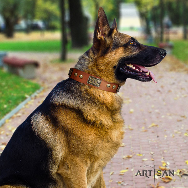 German Shepherd decorated genuine leather dog collar for your impressive dog