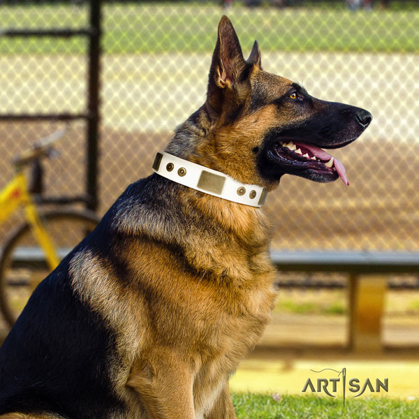 German Shepherd embellished leather dog collar for your attractive pet