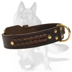 Leather collar with buckle and D-ring