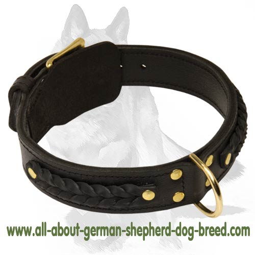 Sturdy leather collar with buckle and D-ring
