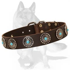 Reliable leather collar with riveted studs