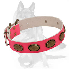 Trendy leather collar with vintage studs