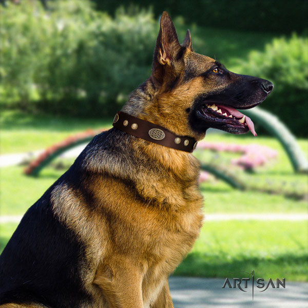 German Shepherd adorned full grain genuine leather dog collar for your stylish pet