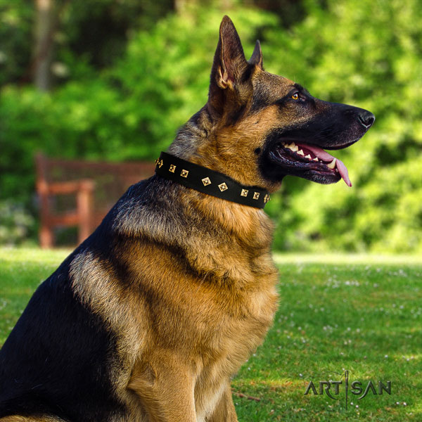 German Shepherd decorated genuine leather dog collar for your attractive four-legged friend