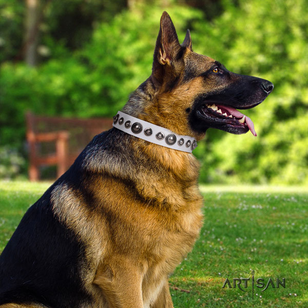 German Shepherd exquisite full grain genuine leather dog collar