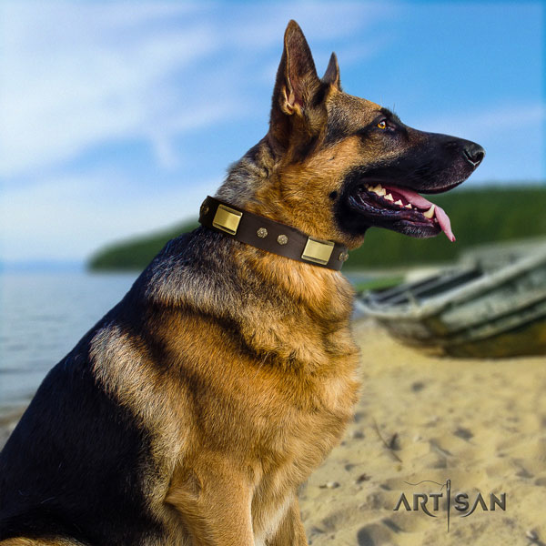 German Shepherd decorated full grain natural leather dog collar for your stylish dog