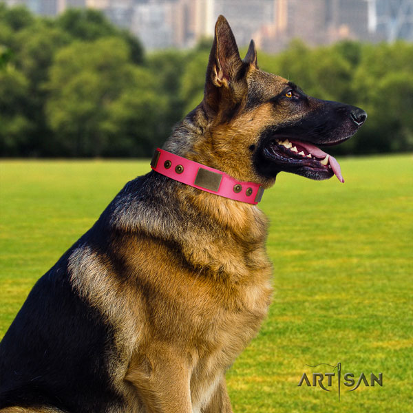 German Shepherd adorned genuine leather dog collar for your handsome canine