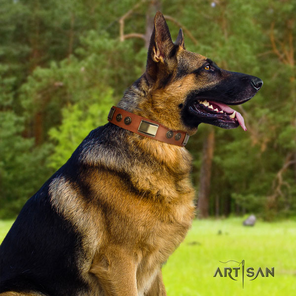 German Shepherd decorated full grain leather dog collar for your handsome canine