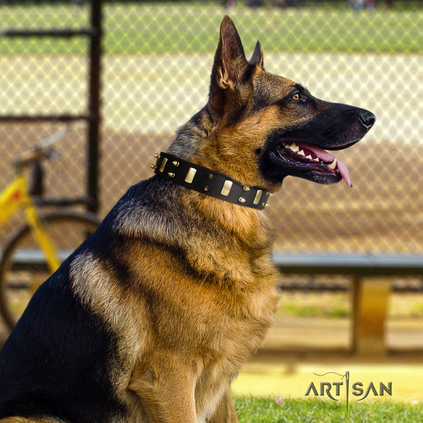 German Shepherd trendy leather dog collar