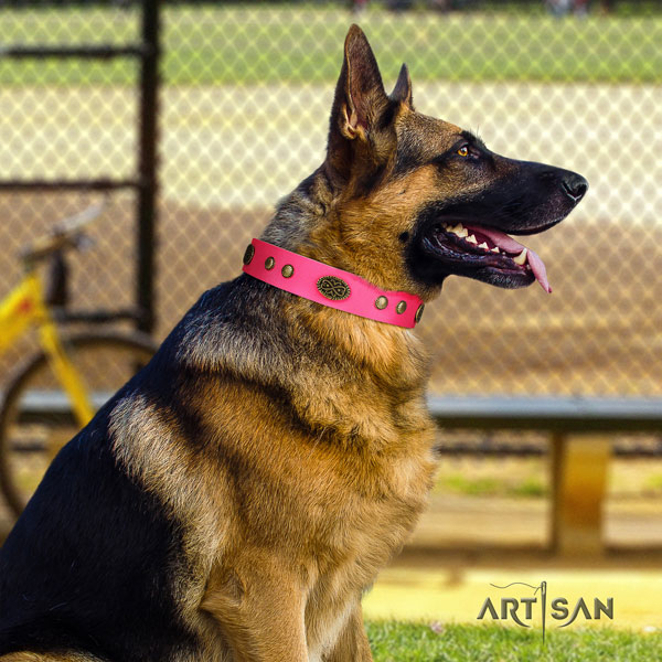 German Shepherd studded full grain natural leather dog collar for your beautiful four-legged friend