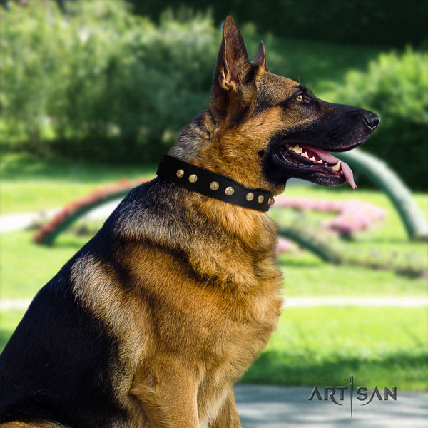 German Shepherd embellished natural genuine leather dog collar for your beautiful four-legged friend
