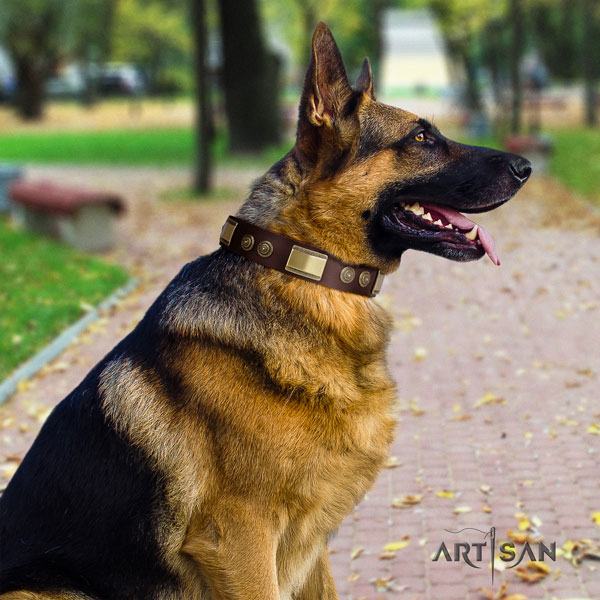 German Shepherd adorned natural genuine leather dog collar for your handsome canine