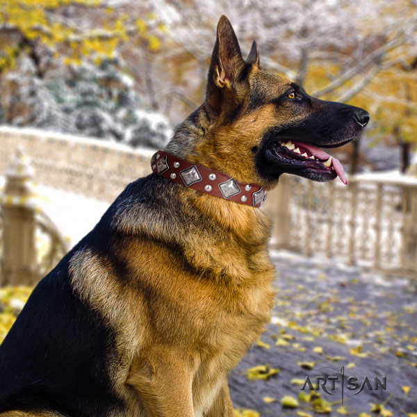 German Shepherd trendy full grain genuine leather dog collar