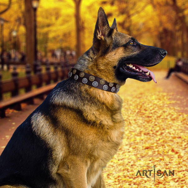 German Shepherd exceptional leather dog collar