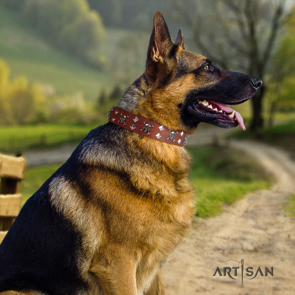 German Shepherd stylish full grain genuine leather dog collar