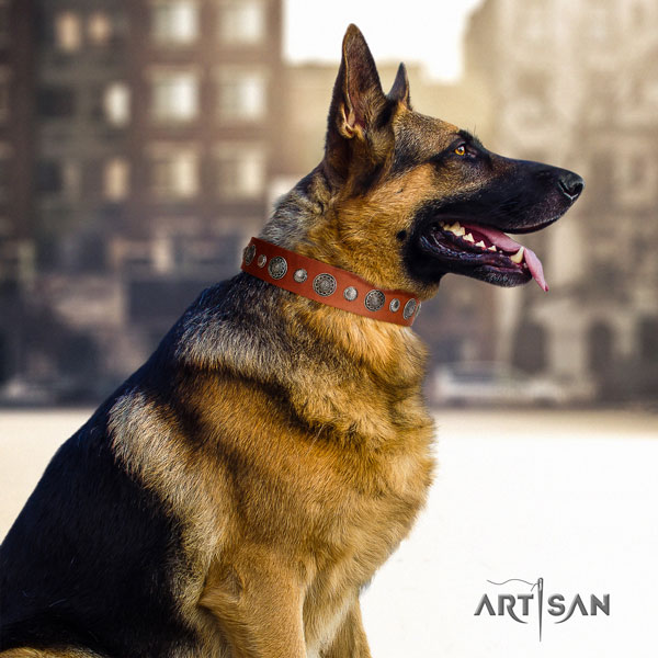 German Shepherd decorated full grain leather dog collar for your stylish doggie
