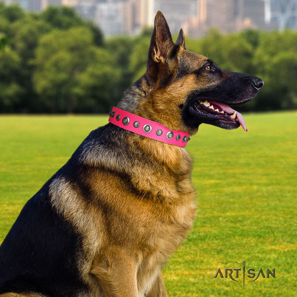 German Shepherd adorned genuine leather dog collar for your attractive dog