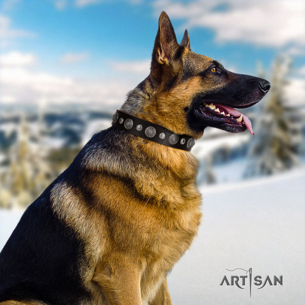 German Shepherd decorated full grain genuine leather dog collar for your lovely canine
