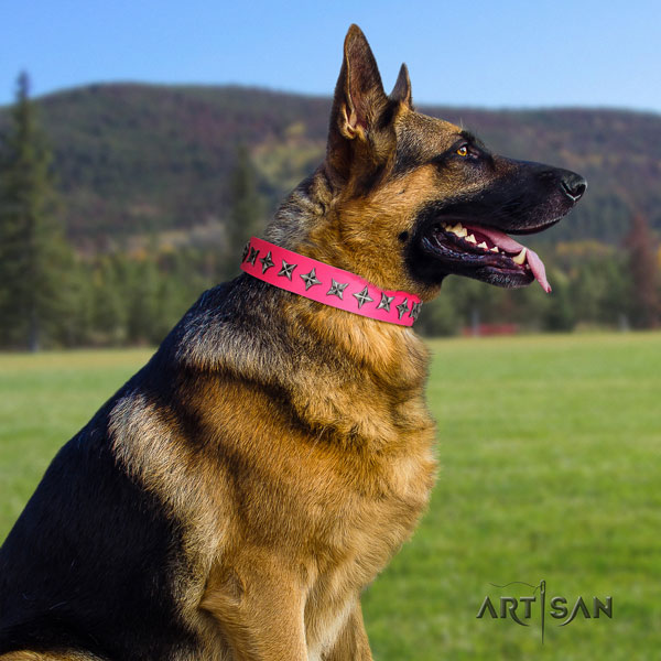 German Shepherd studded full grain natural leather dog collar for your handsome pet