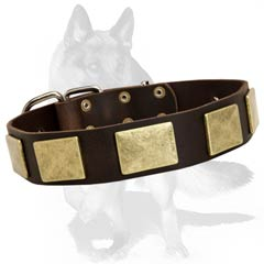 Leather  collar with  nickel decorations