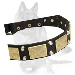 Leather  collar with brass and nickel decorations