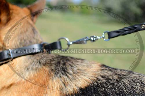 Non-rusting leather collar for German Shepherd