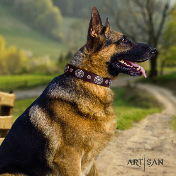German Shepherd handcrafted genuine leather dog collar