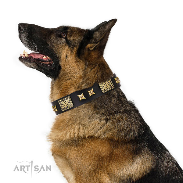 German Shepherd unusual natural genuine leather dog collar for comfortable wearing title=German Shepherd full grain leather collar with adornments for daily walking
