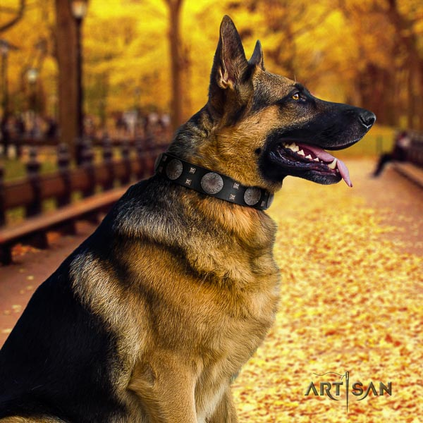 German Shepherd comfortable genuine leather dog collar with stylish design decorations