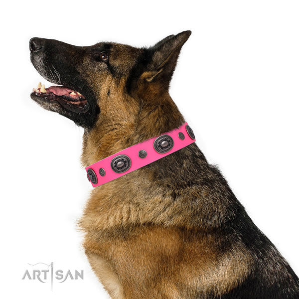 German Shepherd stylish design natural genuine leather dog collar for basic training title=German Shepherd leather collar with studs for walking