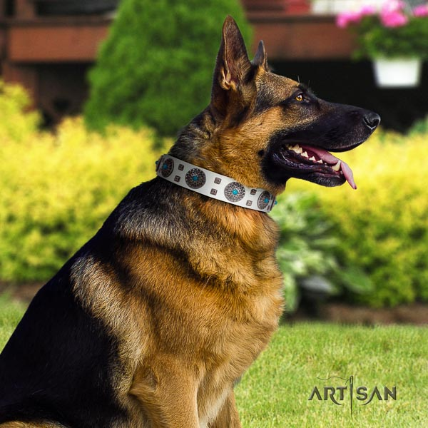 German Shepherd top quality genuine leather dog collar with trendy embellishments