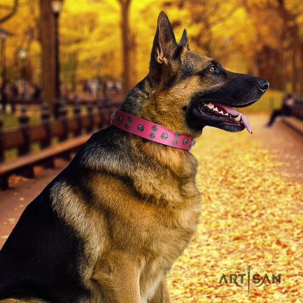 German Shepherd easy adjustable natural genuine leather dog collar with significant studs