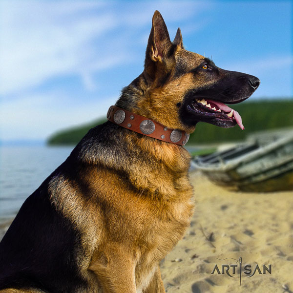 German Shepherd easy adjustable genuine leather dog collar with extraordinary adornments