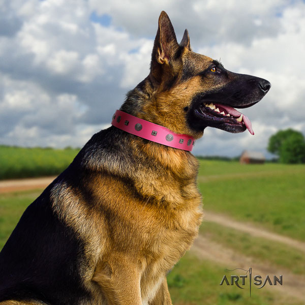 German Shepherd comfortable natural genuine leather dog collar with remarkable decorations