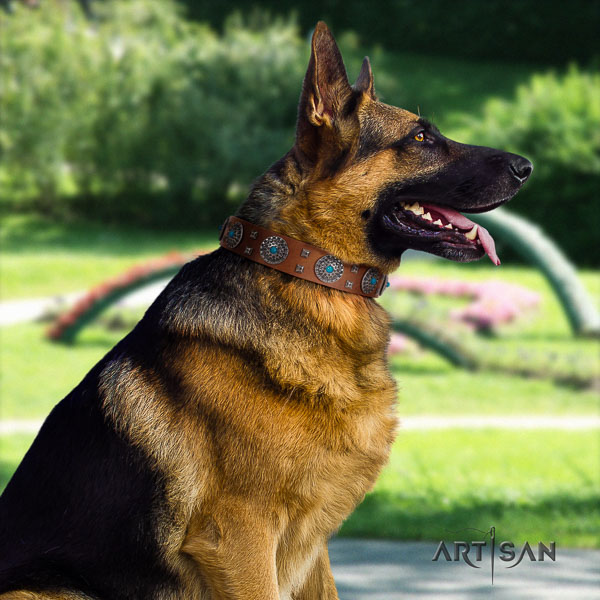 German Shepherd easy adjustable full grain leather dog collar with inimitable adornments